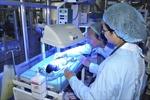Bệnh viện Bạch Mai thông tin về 3 trẻ sinh non của Bệnh viện Sản nhi Bắc Ninh