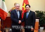 Phó Thủ tướng Phạm Bình Minh tiếp Bộ trưởng Giáo dục và Kỹ năng Ireland