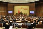 Quốc hội thông qua cơ chế, chính sách đặc thù phát triển thành phố Hồ Chí Minh