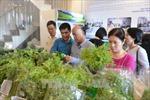 'Tuần lễ An toàn thực phẩm Tết 2018' giới thiệu đặc sản các vùng đến người dân Thủ đô