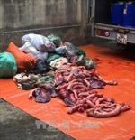 Bắt giữ gần 650kg thịt, nội tạng trâu bò bốc mùi hôi thối