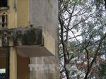 Đổ lan can tầng 2 trường tiểu học Văn Môn (Bắc Ninh), 13 học sinh phải nhập viện