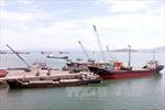 Hoàn thành nạo vét, thông luồng tạm cảng Quy Nhơn