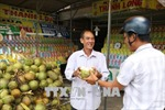 Bến Tre lên tiếng về thông tin dừa tươi bị bơm hóa chất tạo ngọt