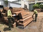 Cần đảm bảo nguồn gốc gỗ nguyên liệu tại các làng nghề
