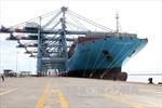 Bà Rịa-Vũng Tàu đưa vào hoạt động cảng quốc tế Thị Vải