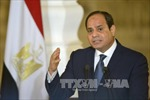 Bầu cử Tổng thống Ai Cập: Đương kim Tổng thống El-Sisi một mình một 'đường đua'
