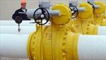 Nga bác yêu cầu giảm nhập khẩu khí đốt của Ucraina