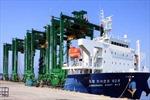 Xuất khẩu 8 cẩu trục sang Singapore