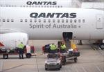 Qantas tạm ngưng mở hãng hàng không mới tại châu Á