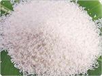 Ăn nhiều gạo trắng, dễ bị tiểu đường