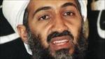 Trên đường chạy trốn, bin Laden kịp có 4 con