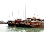 Chấm dứt đóng tàu vỏ gỗ du lịch trên Vịnh Hạ Long