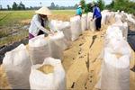 Gỡ khó cho tiêu thụ nông sản