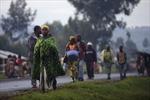 Lực lượng gìn giữ hòa bình LHQ tại CHDC Cônggô bị tấn công