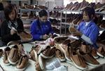 Trao đổi thương mại Việt Nam - Chilê tăng mạnh