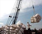 Xuất khẩu gạo tăng cao kỷ lục