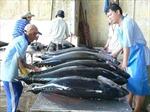 Gần 1,5 tỉ đồng phát triển nhãn hiệu cá ngừ Phú Yên