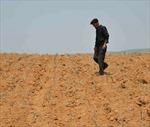 Triều Tiên có thể thiếu hụt lương thực do hạn hán