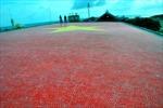 VPBank tài trợ xây dựng lá cờ bằng gốm lớn nhất VN tại Trường Sa