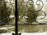 Cuối tuần có mưa dông