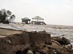 Cà Mau di dời 300 hộ dân ra khỏi vùng có nguy cơ sạt lở