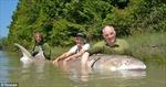 Bắt được cá tầm trắng khổng lồ