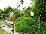 Cầu khỉ Việt Nam lọt danh sách 10 cây cầu đáng sợ nhất thế giới