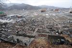 Động đất mạnh ngoài khơi phía bắc Nhật Bản