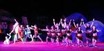 Liên hoan ca múa nhạc chuyên nghiệp toàn quốc