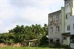 Bảo tồn, khôi phục Mười tám thôn vườn trầu