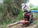Người giải hạn cho cây lúa làng nghèo