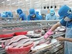 Xuất khẩu cá tra sang EU tiếp tục giảm