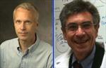 Người Mỹ 'ẵm' trọn giải Nobel Hóa học 2012