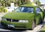 Thảm cỏ di động Mitsubishi Magna