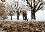 Vẻ đẹp mùa đông Thụy Sĩ