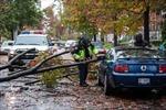 Siêu bão Sandy càn quét nước Mỹ