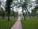 Xây bãi đỗ xe tại Công viên Thống Nhất - Bài 2: Hy sinh công viên?