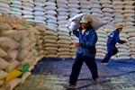 Việt Nam đã xuất khẩu 6,7 triệu tấn gạo