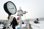 Ukraine xây cụm cảng tiếp nhận khí đốt