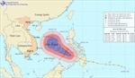 Hôm nay, bão Bopha vào Biển Đông