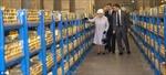 Nữ hoàng Elizabeth thăm kho vàng nước Anh