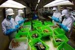 Xuất khẩu của Việt Nam sang Mexico tăng mạnh