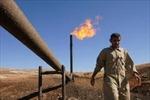 Iraq xuất khẩu dầu mỏ tháng 11 đạt 8 tỷ USD