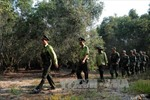 Khởi động các phương án bảo vệ nghiêm ngặt Vườn Quốc gia Tràm Chim trước nguy cơ cháy trong mùa khô 2018