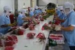 Xuất khẩu nông sản vào EU - Bài 1: Lượng chưa song hành cùng giá trị