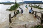 Bài học rút ra từ thiệt hại do mưa lũ tại Nghệ An