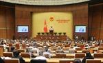Đồng thuận, quyết tâm cao - Nhìn từ các phiên chất vấn tại Quốc hội