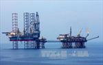 Ban hành nghị định về điều lệ tổ chức và hoạt động của Tập đoàn Dầu khí