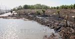 Cần xử lý nghiêm việc buông lỏng quản lý đất đai ở xã Rạch Chèo
